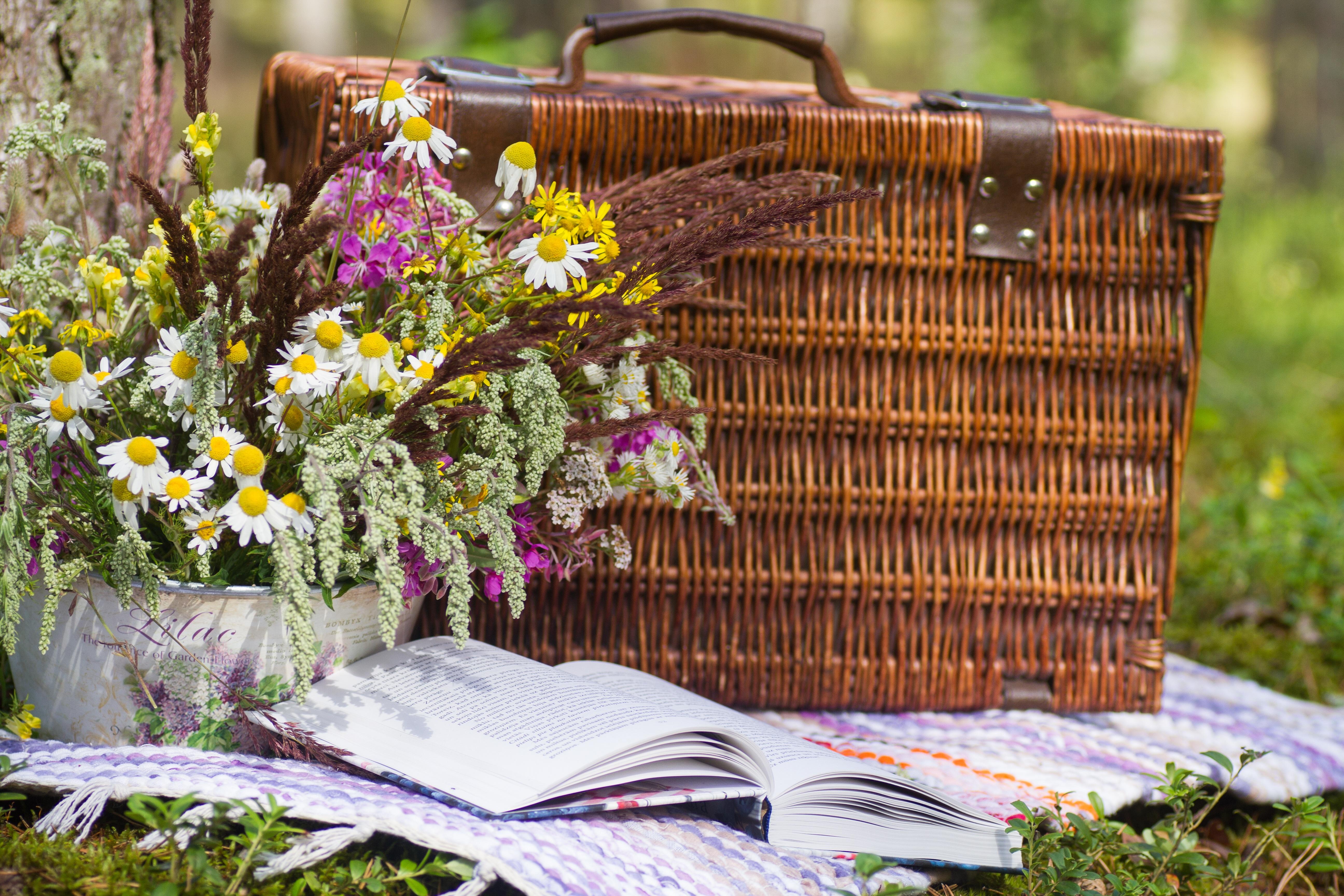 Réservez un panier-repas en chambre d'hôtes / Book a packed meal in B&B